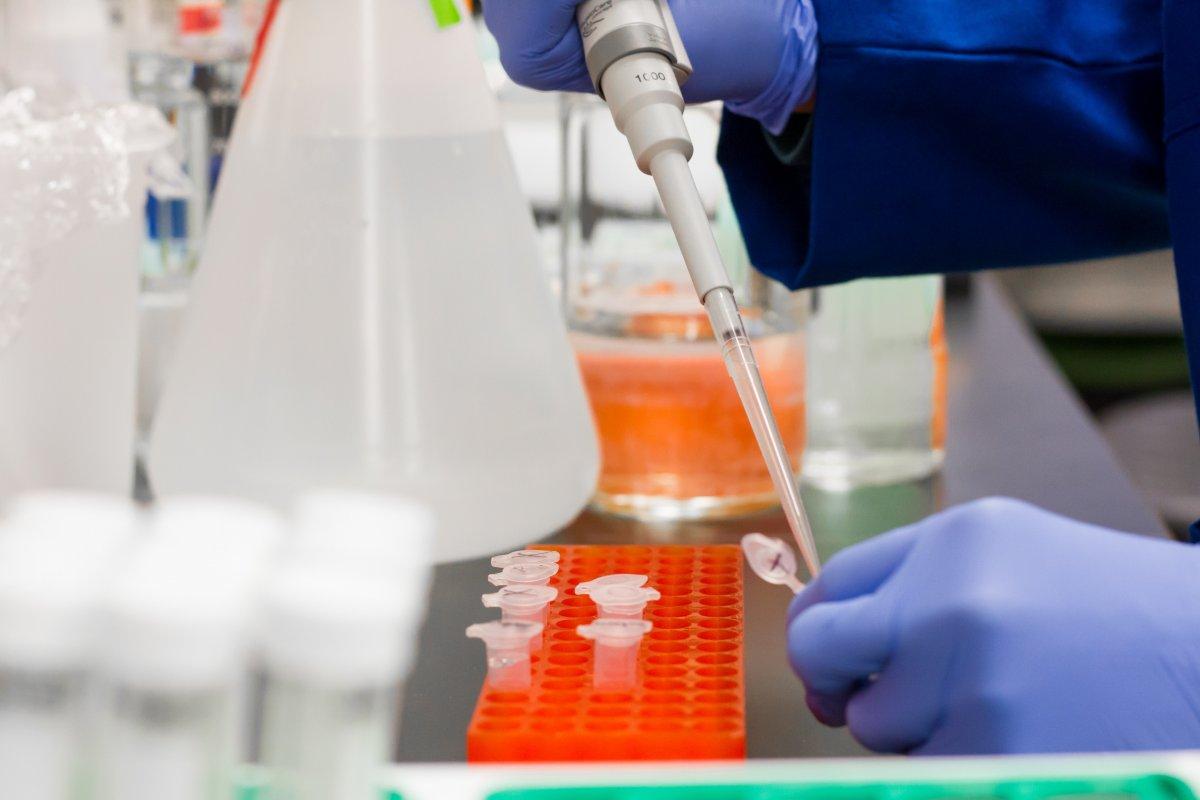Учёные: коронавирус мутирует на глазах и становится опаснее