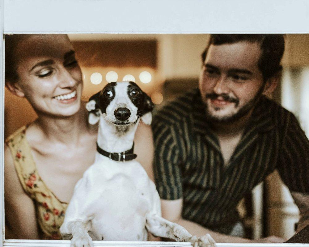 Ученые рассказали, как собаки и люди воспринимают лица