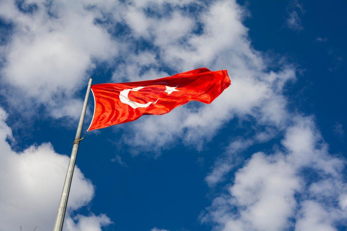 Турция создаст собственную вакцину от коронавируса
