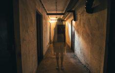 Какие кошмары нам снятся во время пандемии?