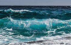 """Стало известно сколько """"дельта"""" штамм выживает в воде"""