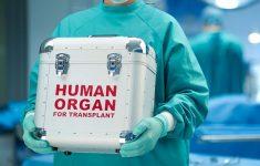Из-за пандемии уровень трансплантаций органов в мире упал