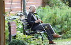 Ученые обнаружили потенциальный метод борьбы с болезнью Альцгеймера